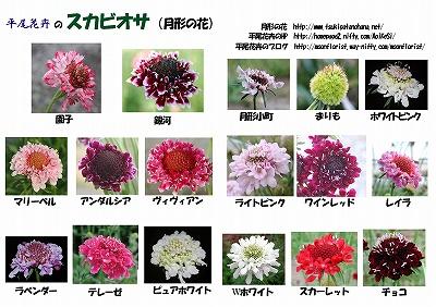 200909_011.jpg