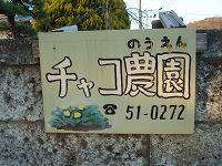 DSC04924.jpg
