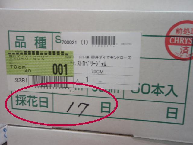 PC190073maru.JPG