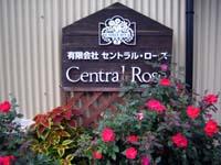 centralrose_board.JPG