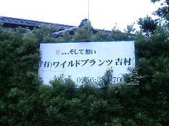 P7030473.jpg