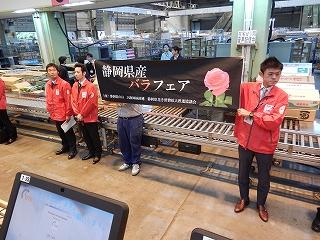今日の市場: 静岡県経済農業協同組合連合会