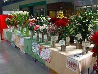 千葉県の花